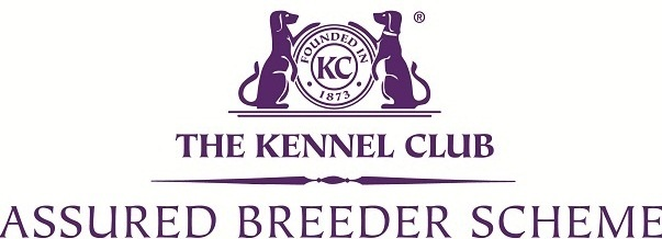 Kennel-Club-Assured-Breeder-Scheme-Logo.jpg
